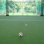 canchas de futbol 5 malvin (5)
